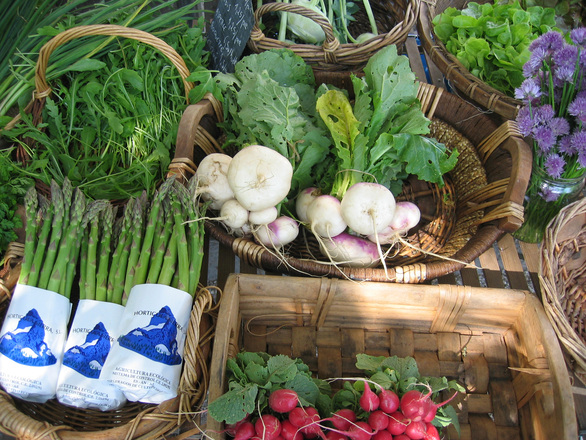 organic-veggie-1538668